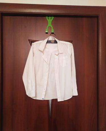 Рубашка белая Chicco Италия и галстук в идеальном состоянии