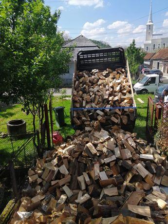 lemne de foc fag la boci