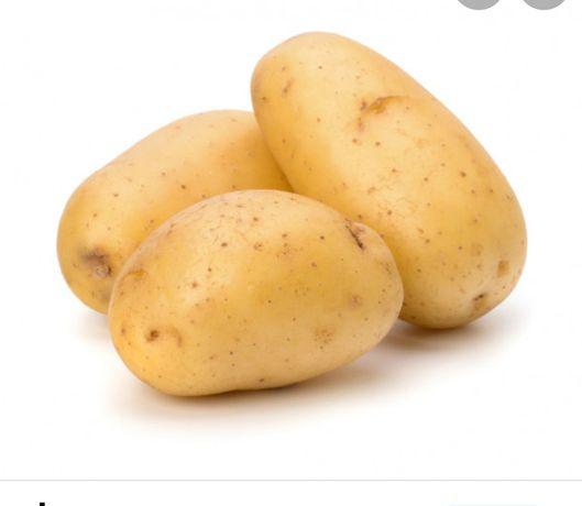 Картошка,картошка,картошка