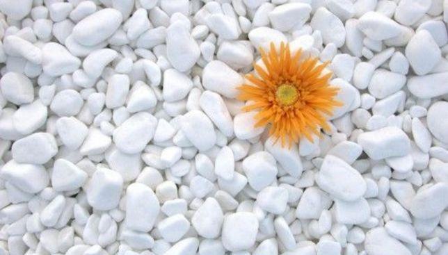 Marmura rotunjita thasos piatra decorativa alba curte gradina flori