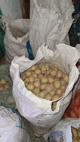 Продам мелкую картошку в наличии 5 мешков   1 ведро 400 тенге