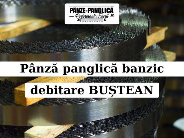 Panza banzic VIPER 4200x40x1, fierastrau panglica debitare bustean