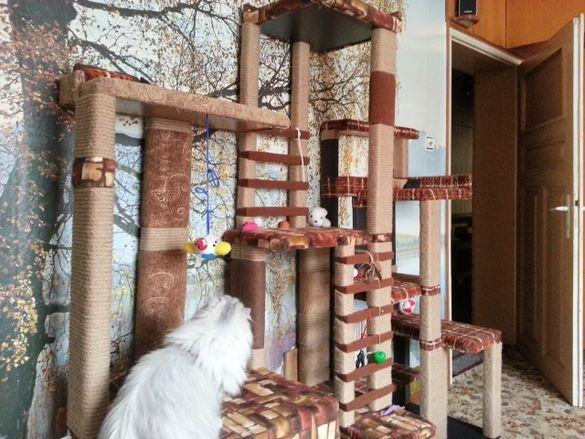 Катерушки за котки