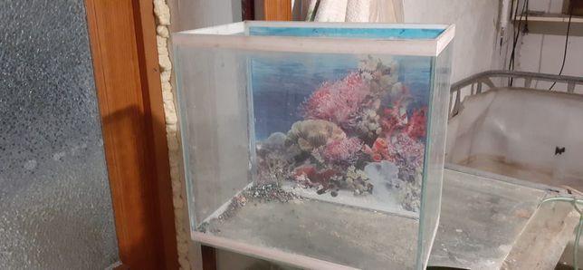 Продам аквариумы  20л