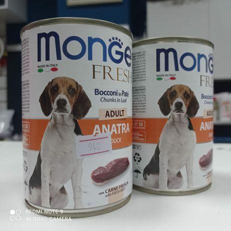 Monge паштет для взрослых собак