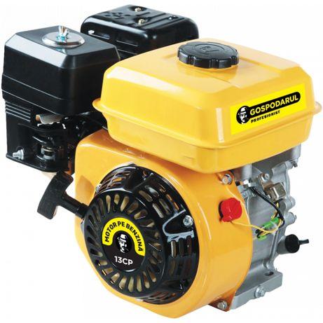 Motor uz general Benzina 13 CP Gospodarul Profesionist