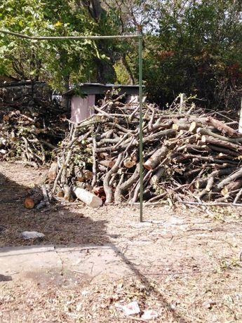 почистване на дворове /дворни места/, извозване на храсти и клониотпад