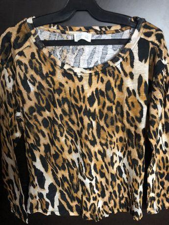 Bluza animal print zara si h&m