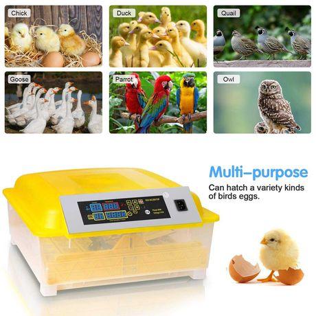 Инкубатор за до 95 яйца автоматичен
