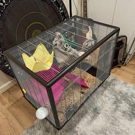 Клетка для грызунов, кроликов и морских свинок