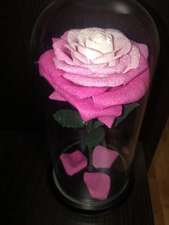 Trandafir in cupola