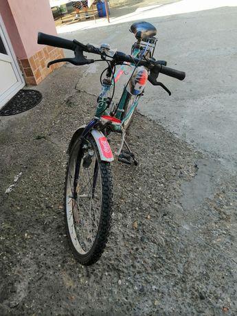 bicicleta montambai