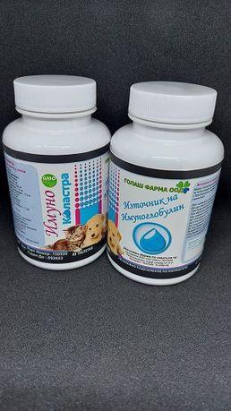 Имуно Коластра - Нов продукт за вашите новородени кученца и котенца