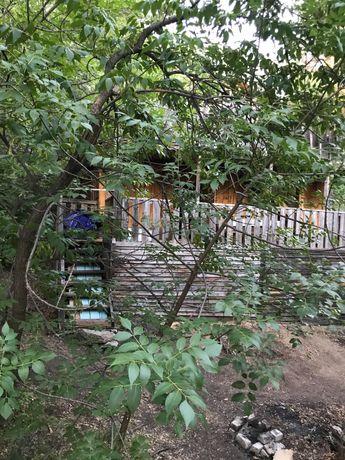 аренда домика на Бухтарме