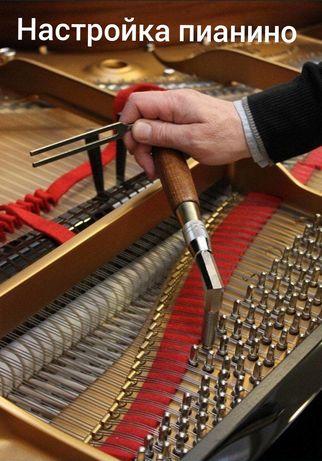 Точная-Настройка-Осмотр,пианино,фортепиано,рояль