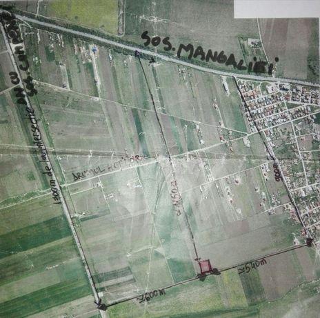 Teren localitatea Lazu, jud. Constanta 2500 mp