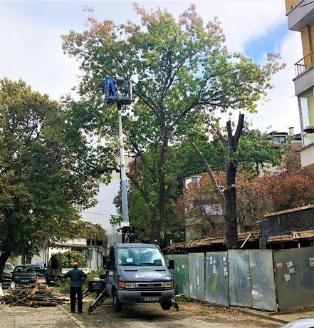 Рязане на дървета , Косене на трева, почистване на терени Варна гр. Варна - image 12