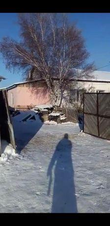 Продам 4-х ком дом село Казнаковка Самарского (Кокпектинского) района