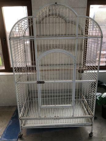 Клетка для Ара (попугай)