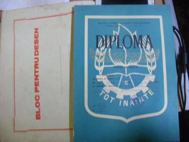 Diploma pionier/pionieri,Pionier de frunte 1972,activitate pioniereasc