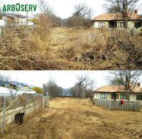 Defrisare cosire si curatare teren de iarba arbusti ambrozie copaci