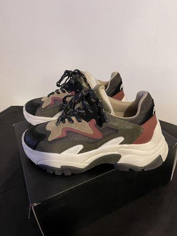 Pantofi sport Ash