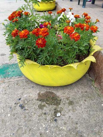 Декоративни гуми за градината