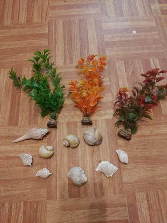 Искусственные водоросли и ракушки