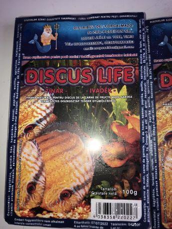 Discus life- junior - Hrana congelata pentru pesti exotici