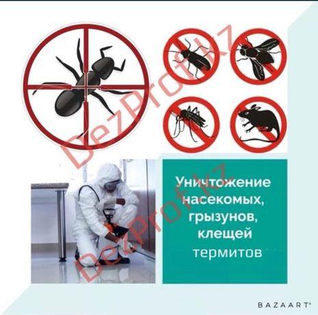 Скидки на уничтожение насекомых