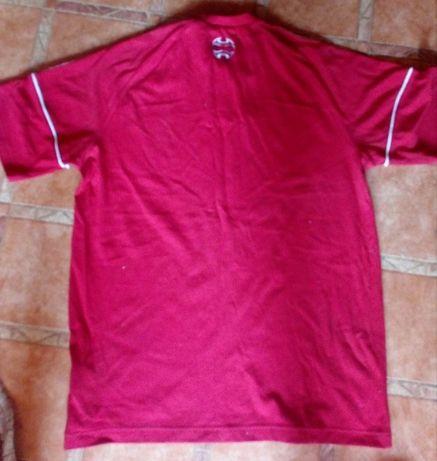 Мъжки спортни тениски