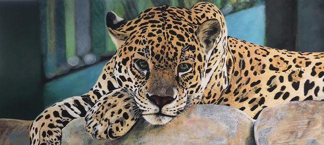 Картина леопарда