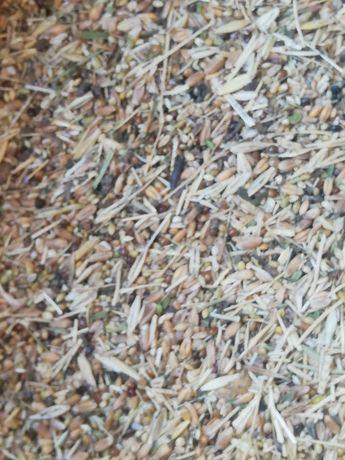 Зерно   отходы..
