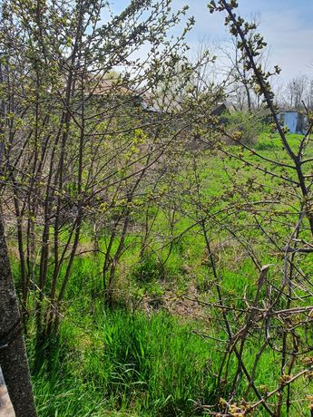 Vând teren intravilan în satul Mărtăcești com.Siliștea jud.Brăila