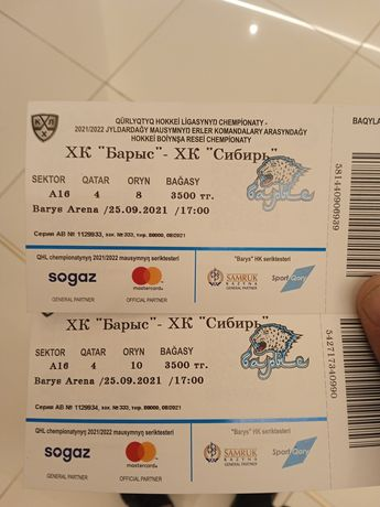 Билеты Барыс-Сибирь