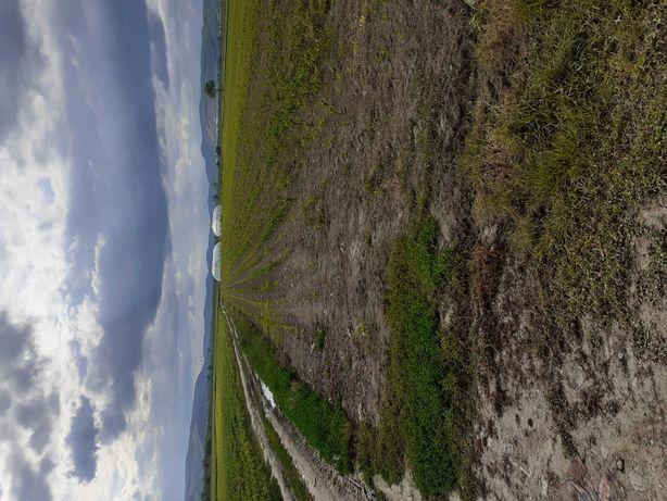 Teren intravilan harau parcela se află fata in fata cu ferma 2340 mp