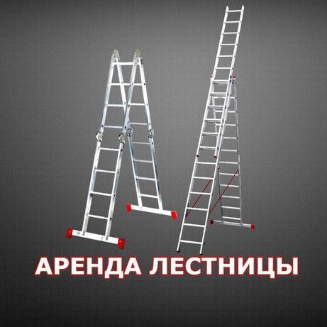 Аренда прокат лестницы трансформер трехсекционная стремянка