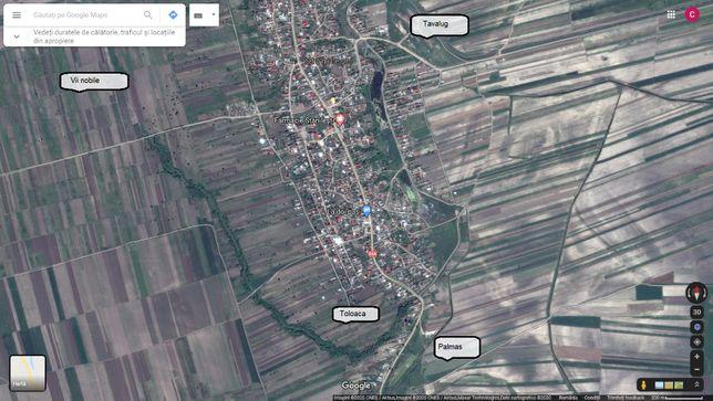Teren agricol in Stanilesti, Jud. Vaslui, 2,587 ha