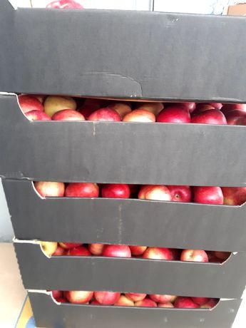 Lădite pentru mere