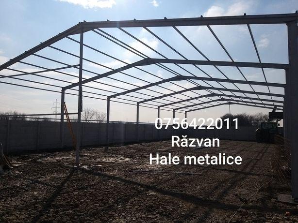 Vand hală metalica structura 12×25