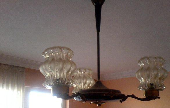 полилеи,лампи