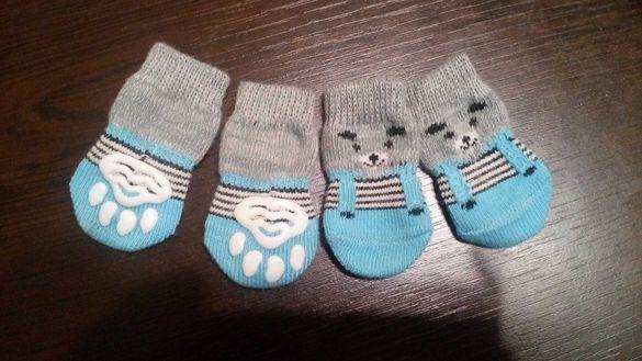 чорапи за домашните любимци