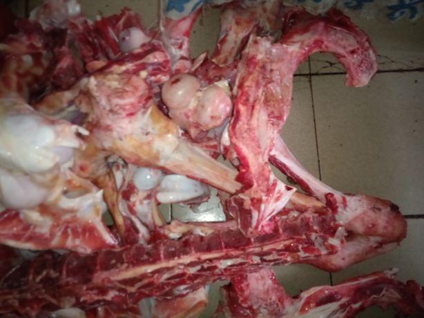 Говяжьи кости. Говядина