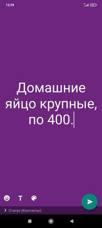 Домашние яйцо по 400