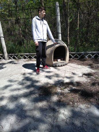 Vând cușcă câine talie mare