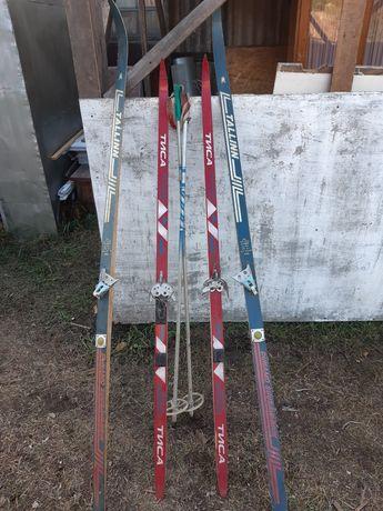 Продам лыжи Тиса