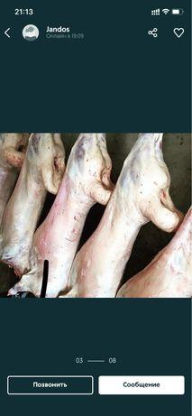 Мясо баранина халяль