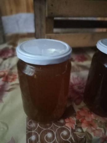 Пчелен мед реколта 2019
