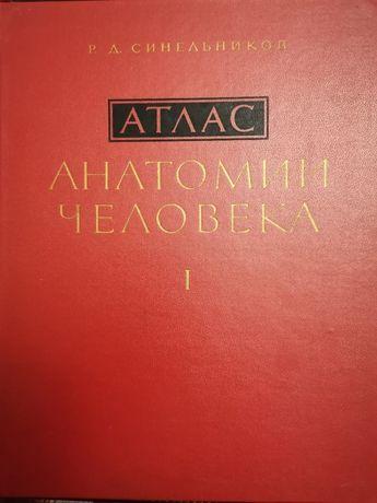 Атлас Анатомии человека, том I