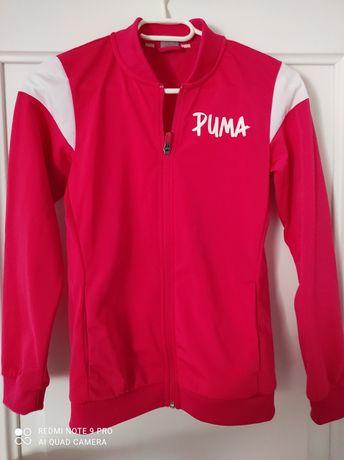 Trening Puma 10-12 ani